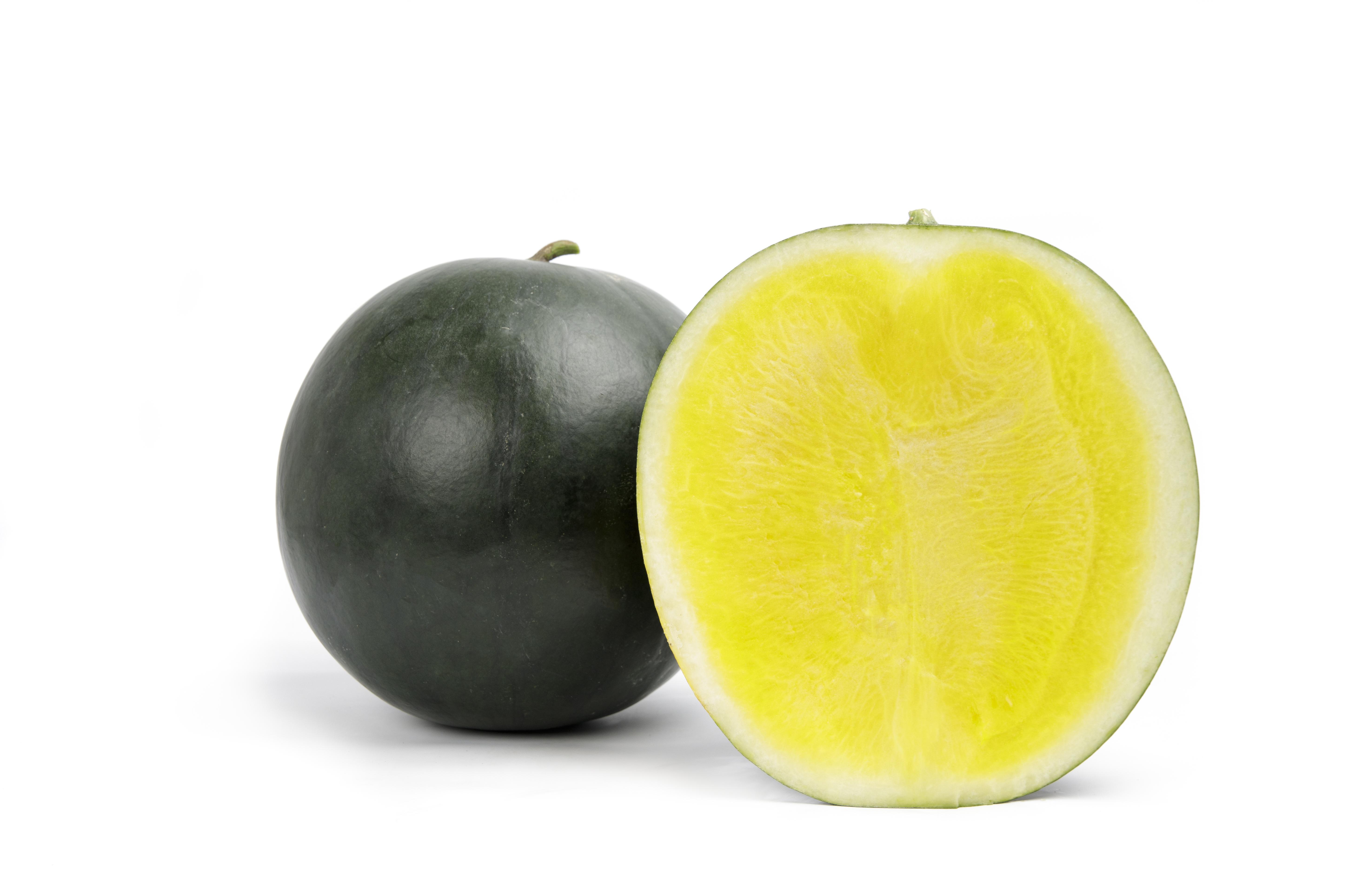 Tropical sunshine melon Rijk Zwaan