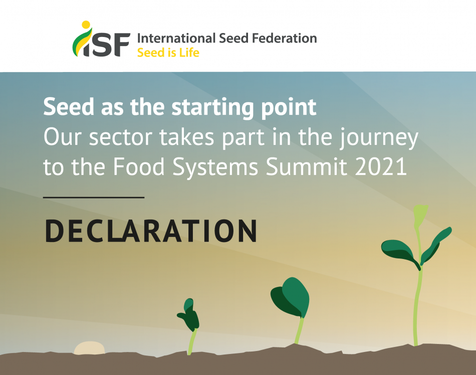 Global seed sector commits to United Nations' Sustainable Development Goals